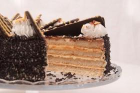 torta-vetrilo2